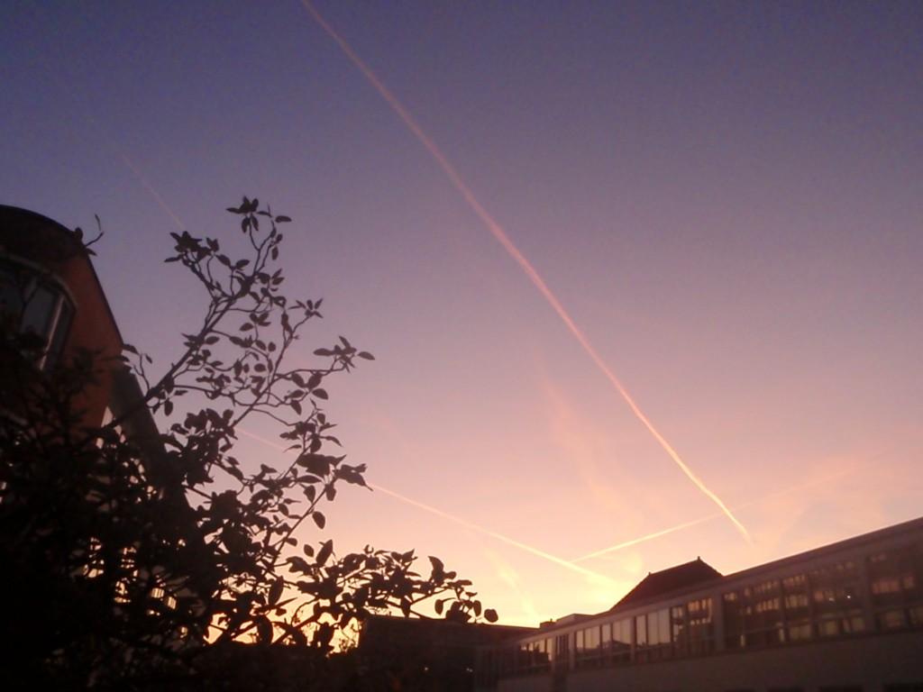 Orange lines at dusk